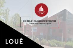 ipro location locaux commerciaux aubagne 119-04